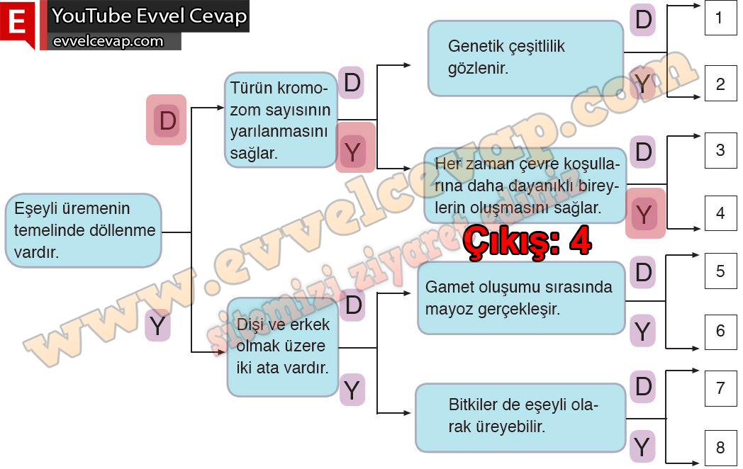 10. Sınıf Biyoloji Meb Yayınları Ders Kitabı Cevapları Sayfa 69